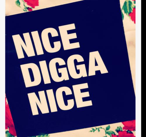 Nice Digga Nice Aufkleber
