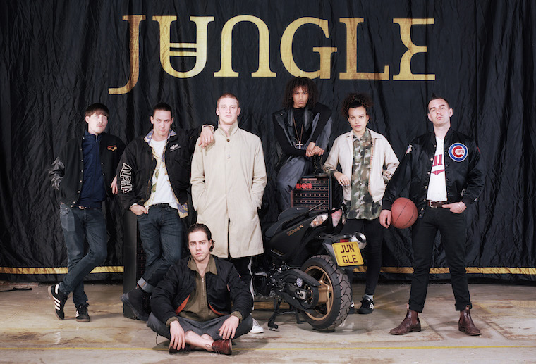 jungle-band-dan-wilton